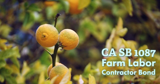 California Farm Laborer Contract Bond to Prevent Harassment